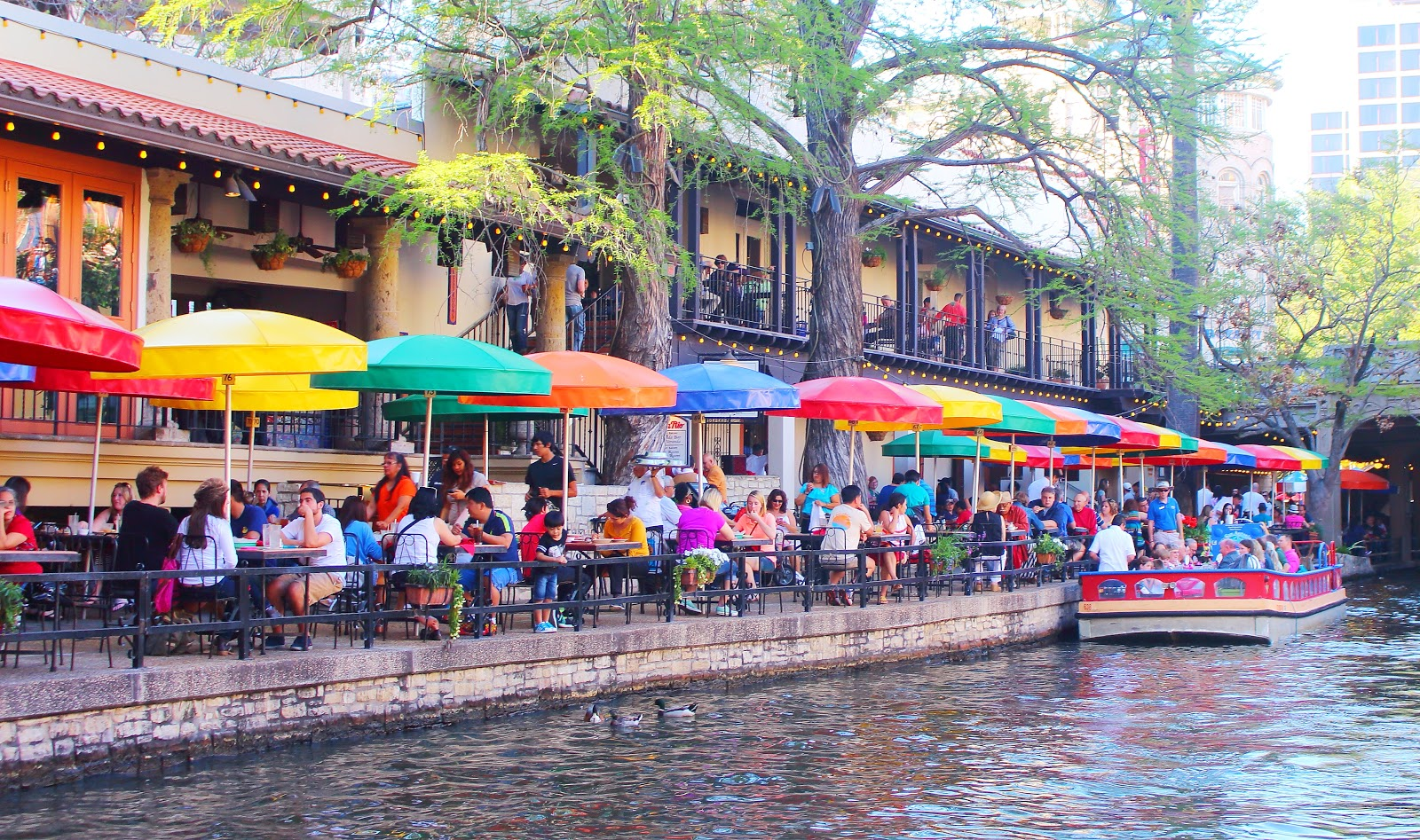 Day Trip to San Antonio: Things To Do in Texas