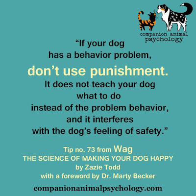 Don't use punishment: A tip from Wag: The Science of Making Your Dog Happy
