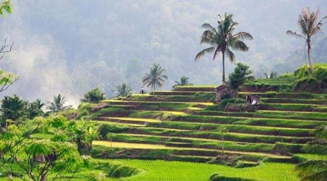 Download 7000 Wallpaper Alam Desa HD Paling Baru