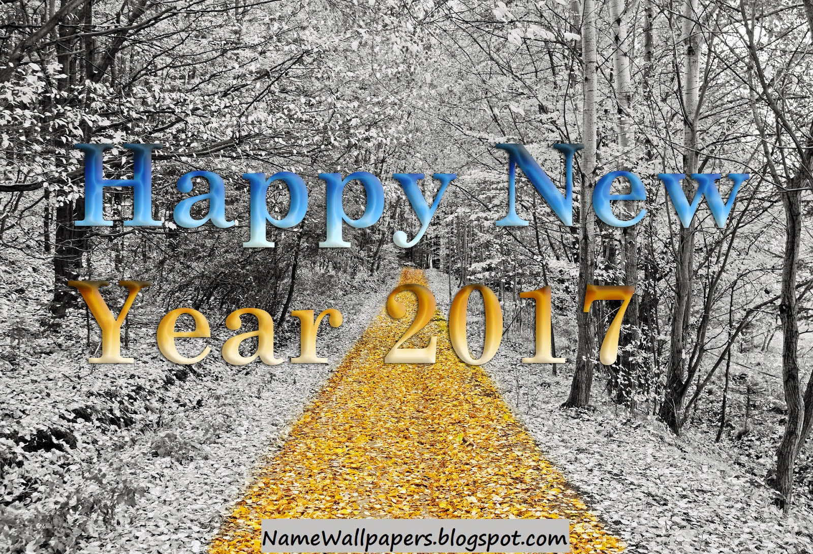 Happy New Year 2017 Wallpapers | Happy New Year 2017 Pictures