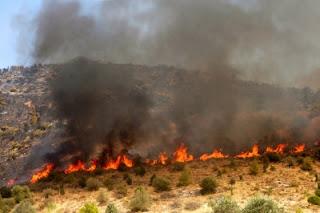 Ανακοίνωση Τμήματος Προστασίας Δήμου Κατερίνης για τον καθαρισμό οικοπέδων από ξερά χόρτα και εύφλεκτα υλικά