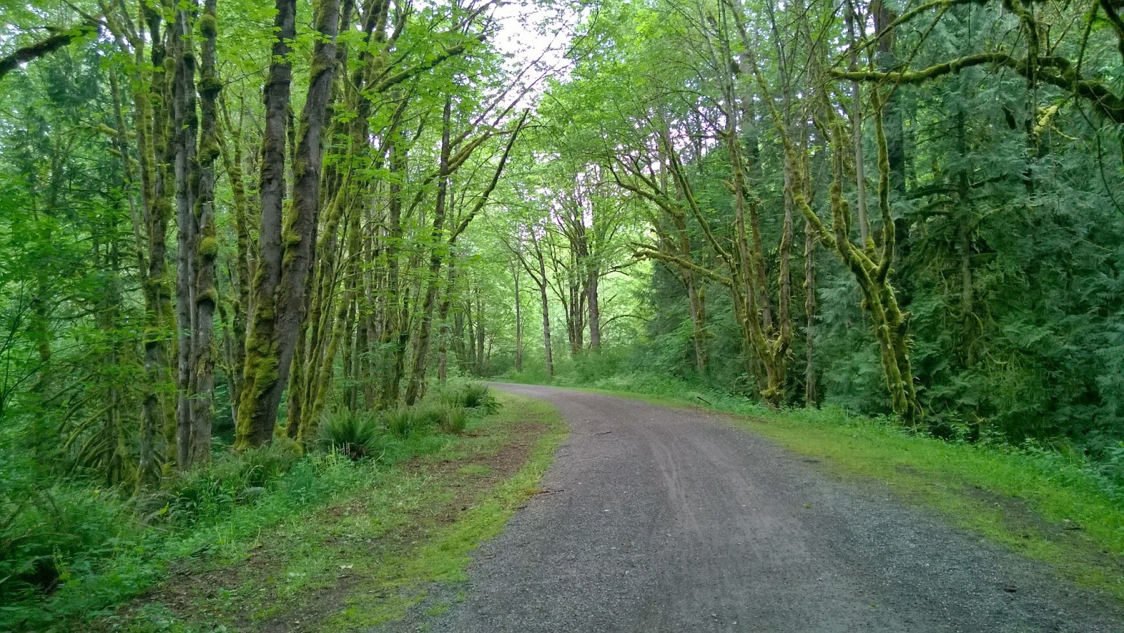 Biking Adventures: Snoqualmie Valley Trail - Fall City to