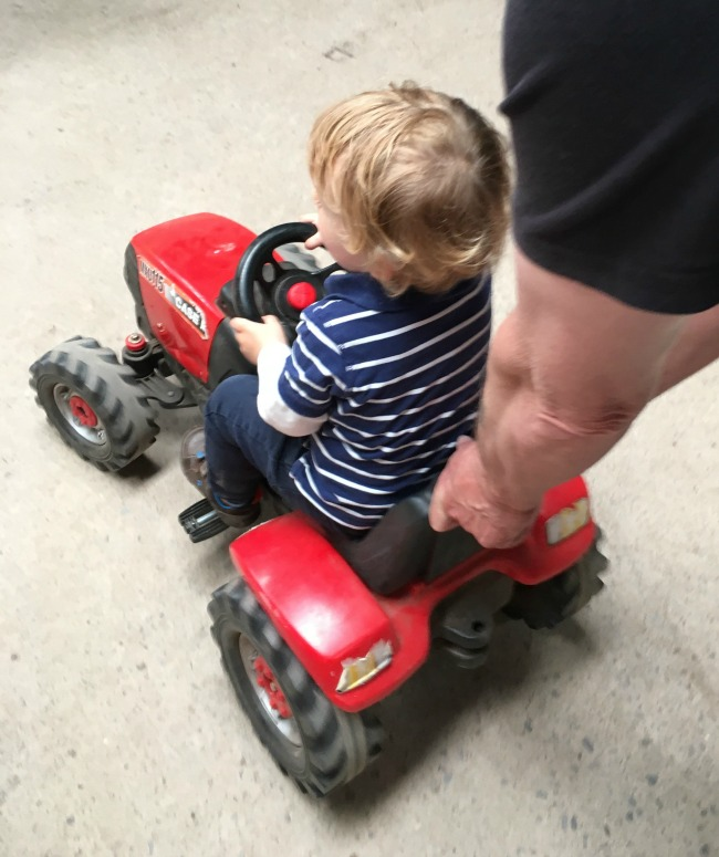 Walnut-tree-farm-park-A-Toddler-on-ride-on-tractor