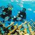 Scuba Diving Compressors