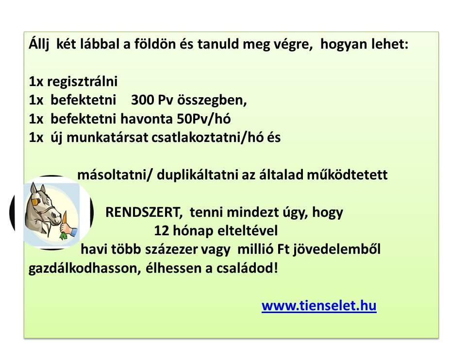 internetes befektetés passzív jövedelemmel)