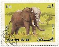 Selo Elefante africano