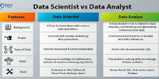 sas data analysts skills
