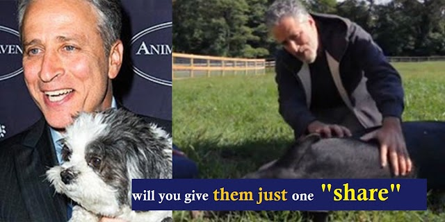 Jon Stewart And His Wife Opened A 12-Acre Sanctuary For Abused Animals