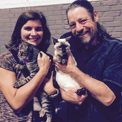 lady and man posing with two kittens, brown tabby and siamese
