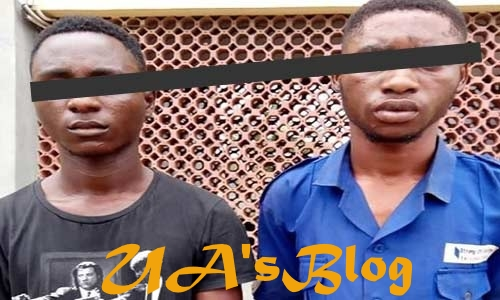 Why we attacked Innoson's Lawyer – Suspects