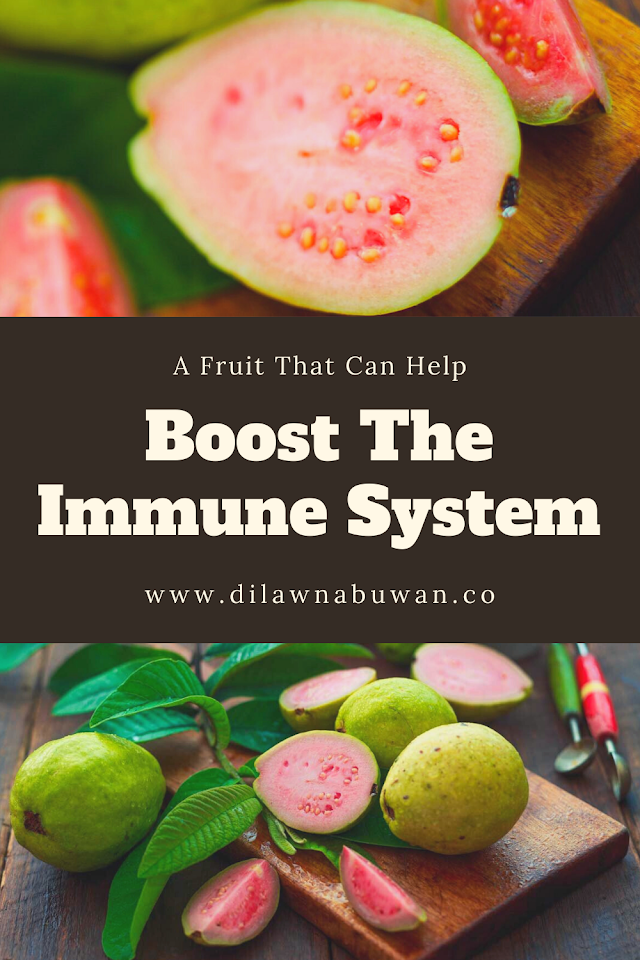 A Fruit That Can Help Boost The Immune System