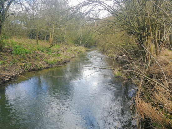 Walk along the side of the River Ash, mentioned in point 5 above  Image by Hertfordshire Walker released via Creative Commons BY-NC-SA 4.0
