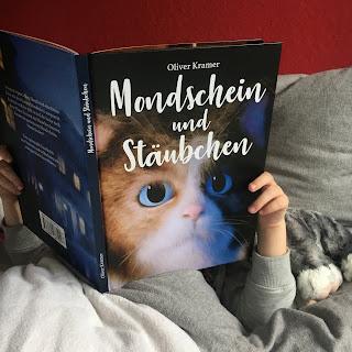 """""""Mondschein und Stäubchen"""" von Oliver Kramer, Buchvorstellung auf Kinderbuchblog Familienbücherei"""