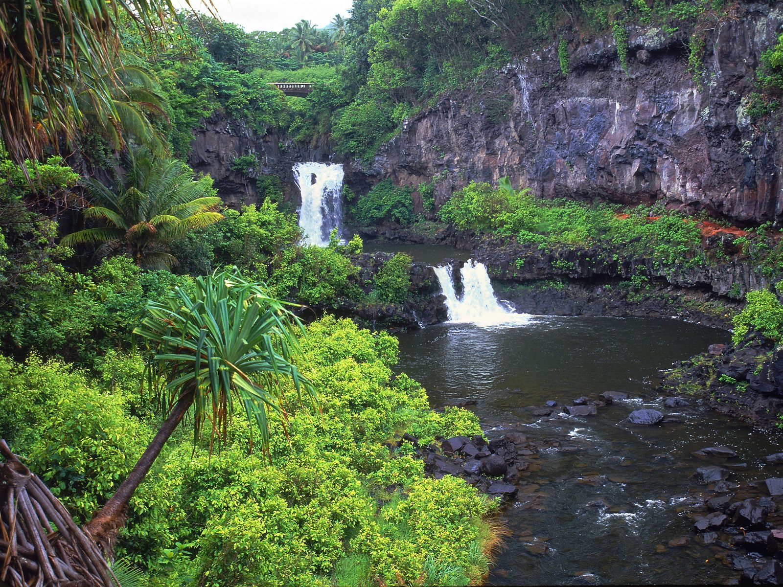 Trip Report - First Time Visit to Hawaii (Kauai portion) - Kauai Forum