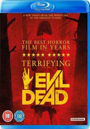 Evil Dead 2013 BRRip Hindi 300MB UNRATED Dual Audio 480p Watch Online Full Movie Download bolly4u