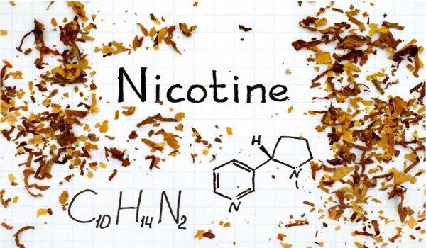 Tips menghilangkan nikotin dalam tubuh secara alami