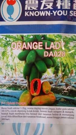 rasa manis, tahan virus, genjah, pepaya, unggul, benih, bibit, hibrida, Pepaya Orange Lady, Orange Lady murah, Benih Pepaya Orange Lady, Known You Seed, Taiwan