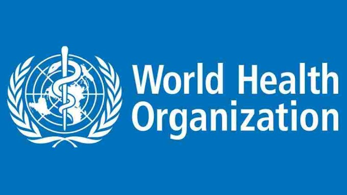 Job Opportunity Medical Officer at WHO Geneva Switzerland.