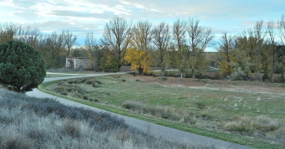 Naturaleza de quintanilla del agua burgos buenas noticias for Noticias naturaleza