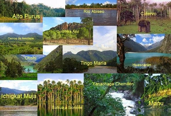Flora Y Fauna Del Perú: ECORREGIONES Y ECOSISTEMAS DEL PERÚ