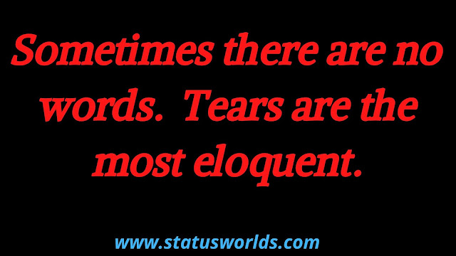 Tears Status and Quotes