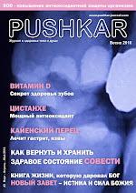ЖУРНАЛ PUSHKAR №3 ВЕСНА 2018