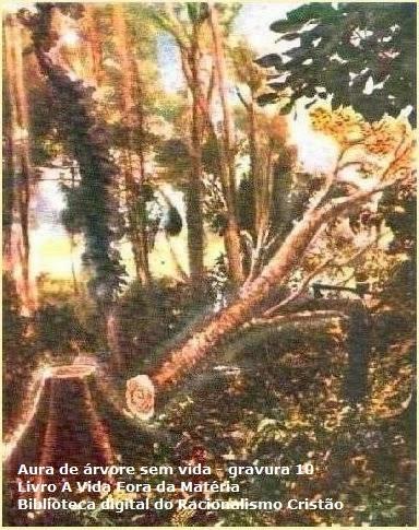 A aura, que envolve todos os corpos vivos dos três reinos da natureza, é uma emanação da Força Inteligente, podendo ser observada pelas pessoas que tiverem desenvolvida a faculdade mediúnica da vidência.