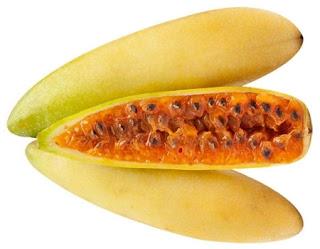 Curuba Fruta Exótica Venezolana