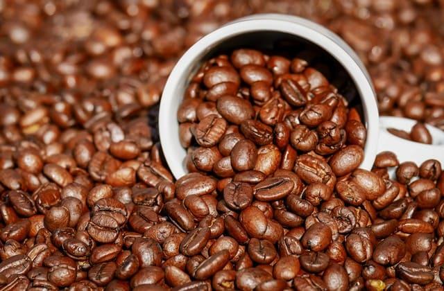 fakta kopi mengenai kandungan kafeinnya