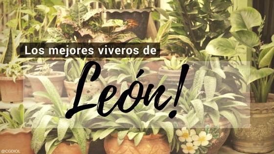 Comprar Plantas online en León, España