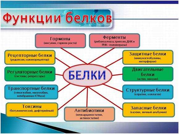 Кератин функция