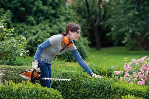 Tailler sa haie en fonction des saisons et du type d'arbuste, de feuillage et de plante