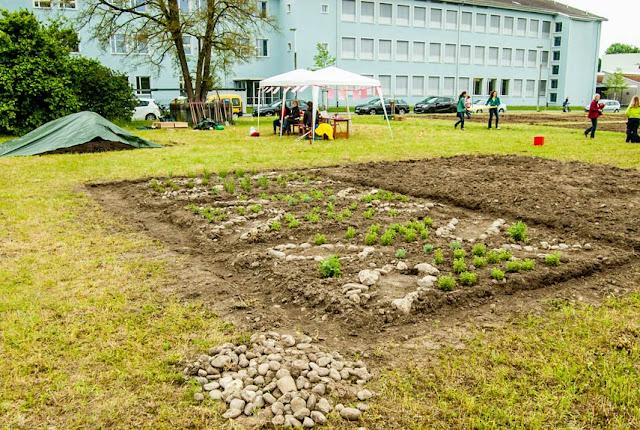 Pflanzen in der Schule: «Die Praxiserfahrung ist für alle ein Gewinn»