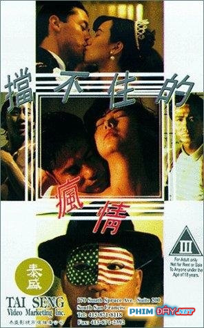 Cơn Gió Tình Không Ngăn Nổi - Don't Stop My Crazy Love for You (1993)