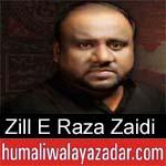 https://www.humaliwalayazadar.com/2014/10/zille-raza-nohay-2012-to-2015.html