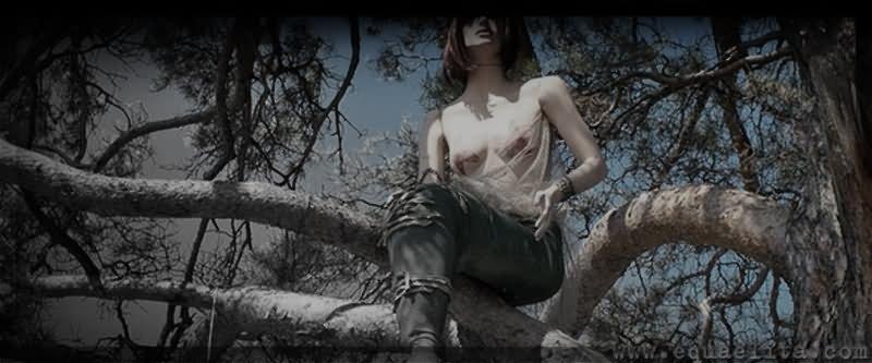 Русалка в ветвях дерева