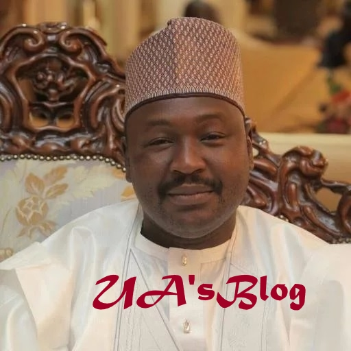 Senator Misau reveals persons behind Nigeria's problems