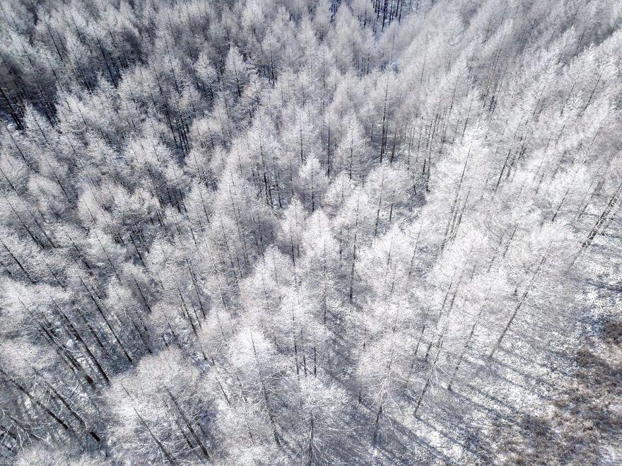 Fotógrafo registra belíssimas imagens do inverno no Japão  2293a91ca1096