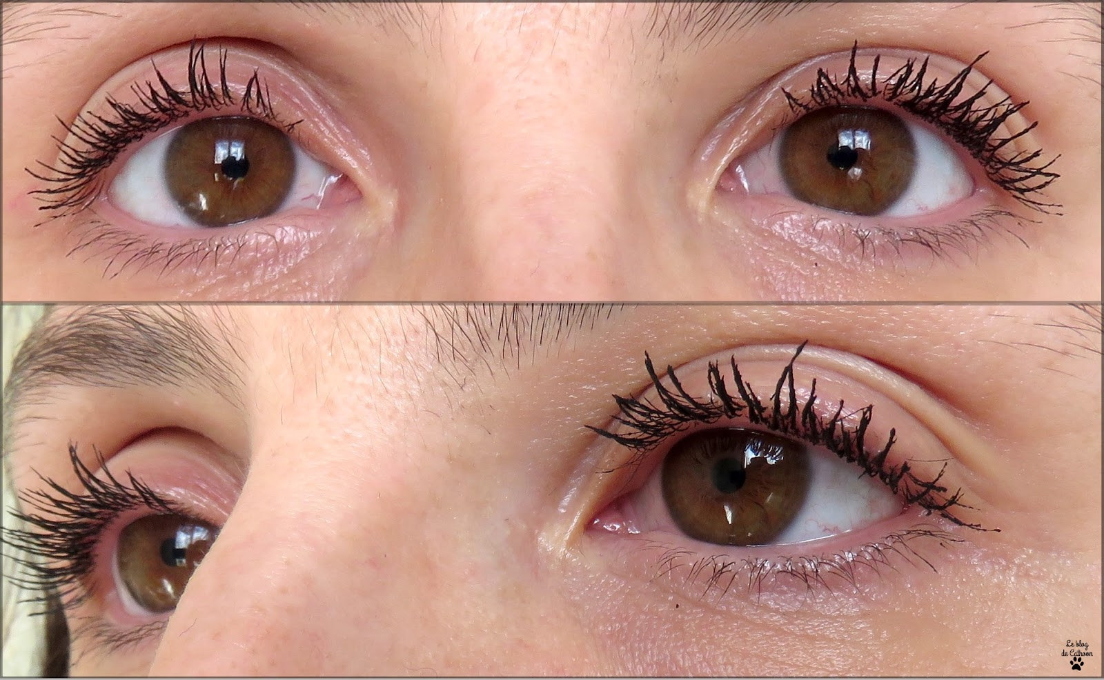 résultat False Lashes Mascara - Golden Rose - Cookie's Make up