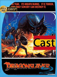 El Verdugo De Dragones [1981] HD [1080p] Castellano [GoogleDrive] SilvestreHD