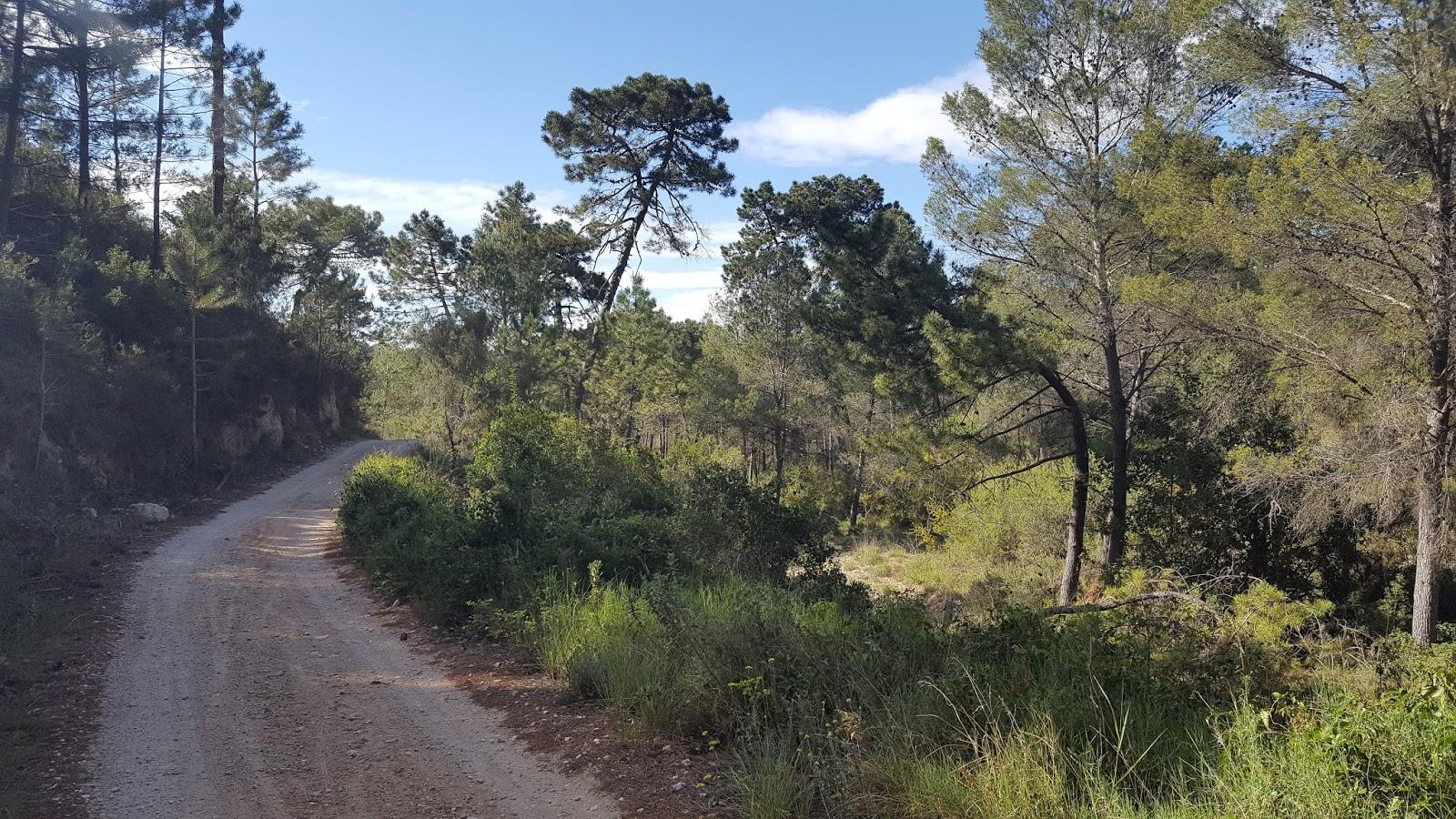 Cycling in Valencia - Cami de la Serra, Quatretonda