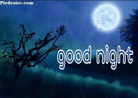 Good Night Photos | Best 22 Good Night Photo