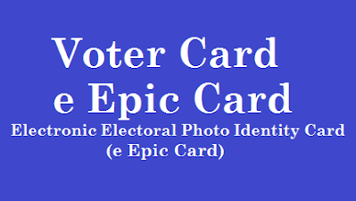Download Digital Voter Card  https://www.paatashaala.in/2021/09/Download-Digital-Voter-Card-2021-from-e-Epic-Card-Website-voterportal.eci.gov.in.html