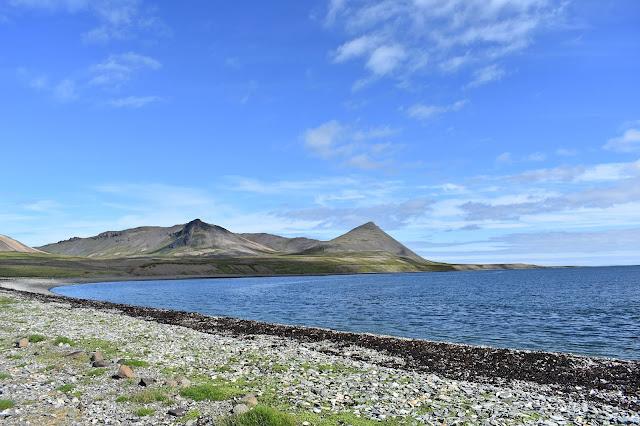 Widok na góry na Islandii