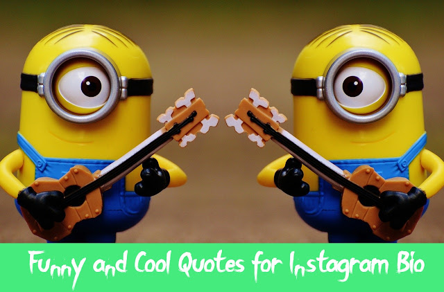 Creative Instagram Quotes and Bios