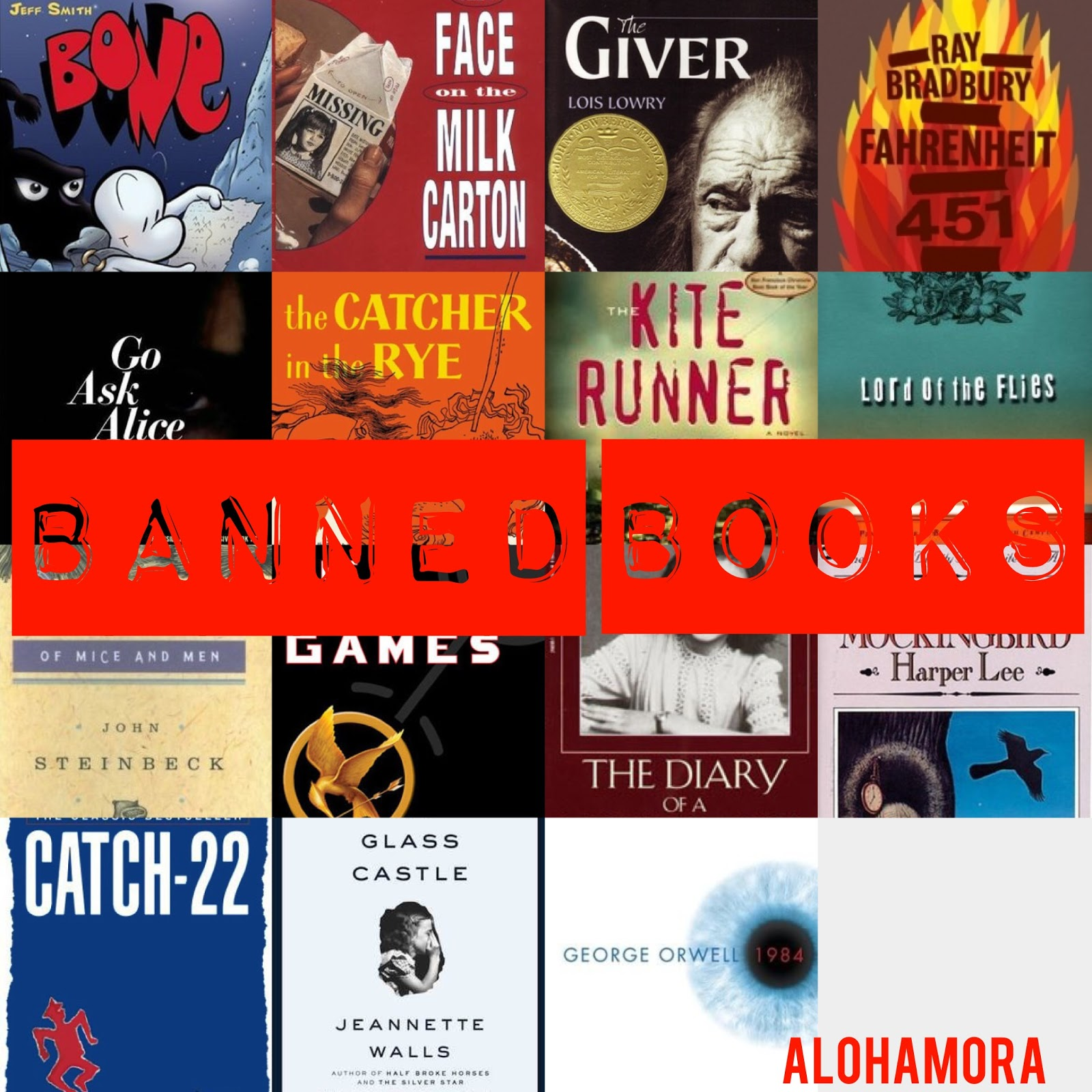 The best Banned Books for Adult and Young Adults.  Fast reads, thought provoking, inspiring, and eye opening books.  Alohamora Open a Book http://www.alohamoraopenabook.blogspot.com/