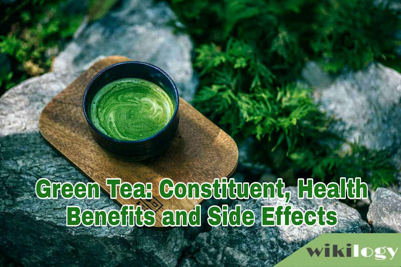 Green Tea Constituent Health Benefits and Side Effects