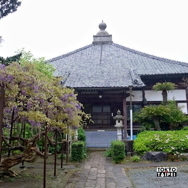 【稻田寺】伊豆少見淨土宗寺院 裡面有古老佛像和在地故事