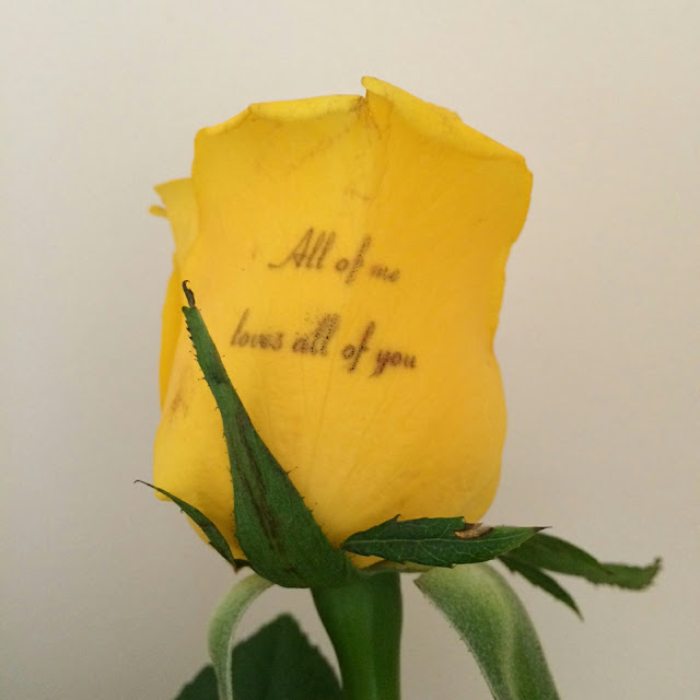 Personalized flowers review, personalised rose