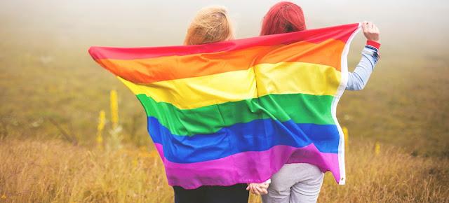 Ngeri, Ada Lima Fraksi DPR Setuju LGBT dan Pernikahan Sejenis